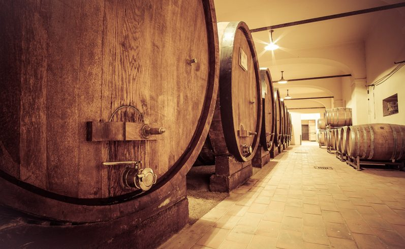 Wine cellar tour in Langhe Roero e Monferrato