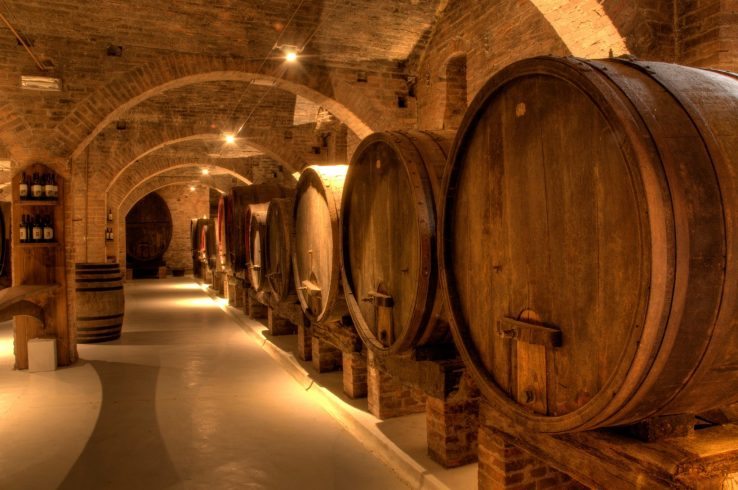 Langhe and Roero's wine cellar visit
